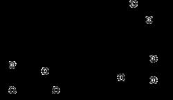 Struktur von Oleandrin