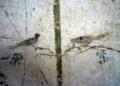 Oplontis 33.PNG