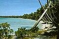 Orona Lagoon Shore 1965 AKK.jpg
