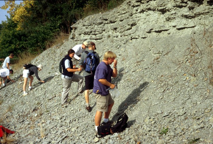 Outcrop of Upper Ordovician rubbly limestone and shale, southern Indiana