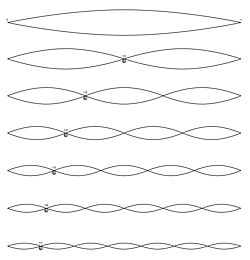 Harmonic series of a string.