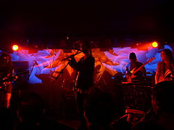 Ozric Tentacles live in Zagreb in 2004.jpg