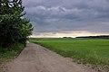 Přerov nad Labem, okolní krajina 04.jpg