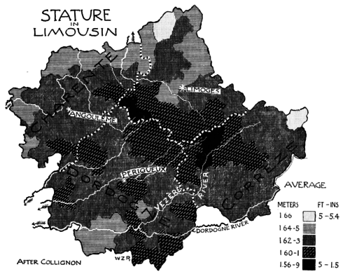 PSM V51 D459 Stature in limousin.png
