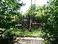Paignton , Paignton Zoo, Orangutan Enclosure - geograph.org.uk - 1483627.jpg