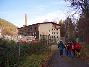 Ecker - Cardboard factory in the upper Ecker valley