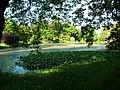 Paradise Pool at Hodnet Hall Gardens - geograph.org.uk - 1470199.jpg