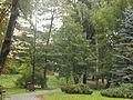 Park miejski w Kielcach (94) (jw14).JPG