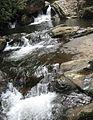 Parque Estadual da Serra do Mar - Ubatuba - Chacoeira em Camburi - 2008 mes11 dia02.JPG