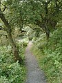Pathway near Walltown Crags - geograph.org.uk - 528857.jpg