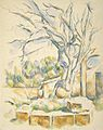 Paul Cézanne - Pistachio Tree at Château Noir.jpg