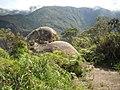 Pedra do Queijo^^^ - PARNASO - panoramio - paulsmithrj.jpg