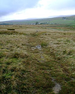 Pennine Way reaches the Baldersdale road - geograph.org.uk - 1567761