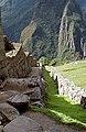 Peru-235 (2218705218).jpg