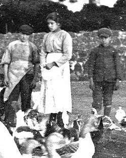 Photograph of Saint Maria Goretti, 1902.jpg
