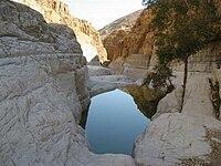 PikiWiki Israel 411 Nachal David Ein Gedi גב בנחל דוד העליון.jpg