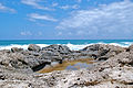 PikiWiki Israel 43690 Dor Beach.JPG