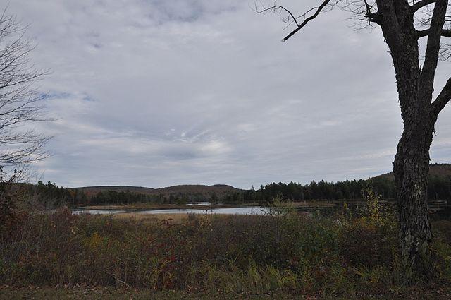 Pillsbury State Park