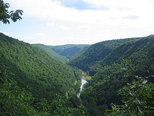 A view of a wooded gorge with a stream in the bottom and a trail to the left of the stream, the trees are covered with leaves and are mostly deciduous.
