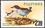 Pitta steerii 1979 stamp of the Philippines.jpg