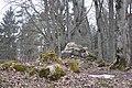 Plāteres pilskalns, Madlienas pagasts, Ogres novads, Latvia - panoramio (3).jpg