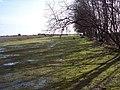 Plantation edge near Turf Hill Inclosure - geograph.org.uk - 354707.jpg