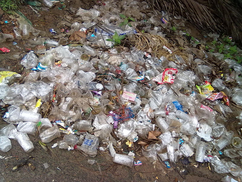 File:Plastic waste at Batlapalem, Andhra Pradesh.jpg