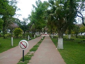 Plaza de Alejandra