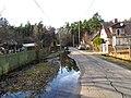 Pludi druvciema 2011 - panoramio (15).jpg