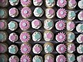 Polka Dot Baptism Cupcakes (3226501961).jpg