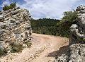 Portella de Rin de la Carrasca.jpg