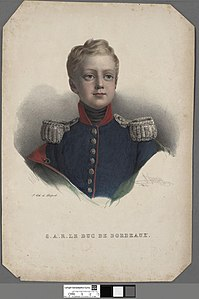Portrait of S.A.R. Le Duc de Bordeaux (4674748).jpg
