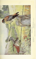 Portraits and Habits of Our Birds-1 0073.png