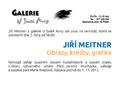 Pozvanka na vernissage Jiri Meitner, Obrazy, kresby, grafika, galerie U Svate Anny, Plzen, 2. 10. 2013.png