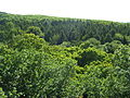 Praha park Cibulka pohled z rozhledny.jpg