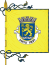 Flag of Santo Tirso