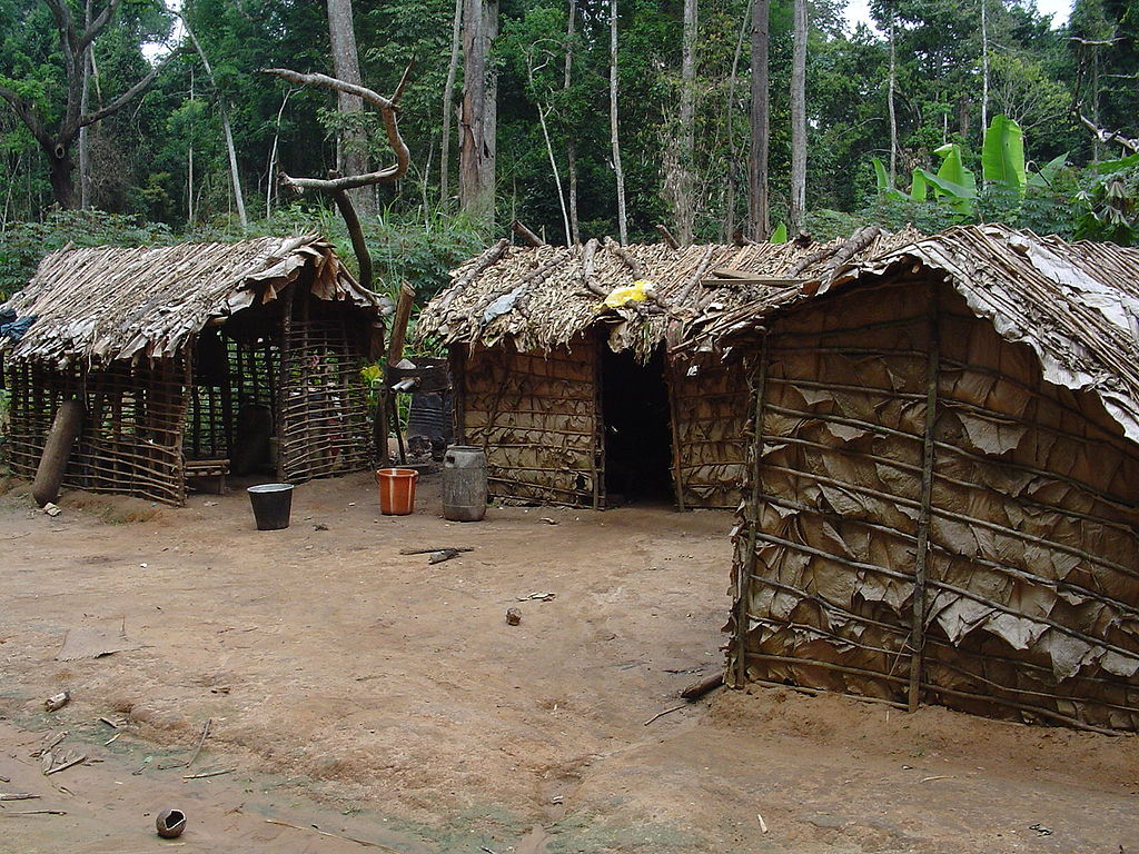 File:Pygmy house outsideview.jpg - Wikimedia Commons