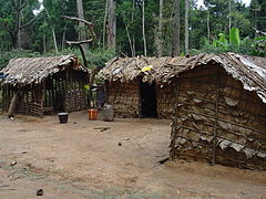 Pygmy house outsideview.jpg