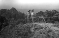 Queensland State Archives 2079 Top of Razorback Tweed Heads c 1934.png
