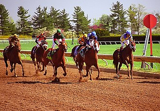 Keeneland - A race at Keeneland