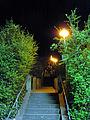Radebeul Treppenmarathon2012 Treppenaufstieg nachts.jpg