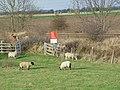 Railway Crossing - geograph.org.uk - 610252.jpg