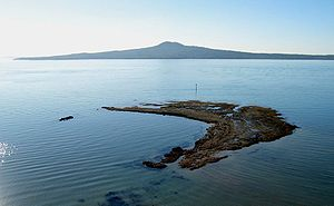 Auckland - The volcanic Rangitoto Island in the background. Seen from Achilles Point