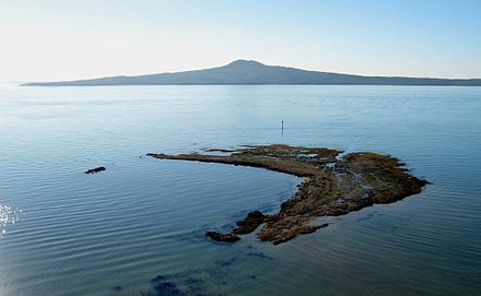 The volcanic Rangitoto Island in the background. Seen from Achilles Point Rangitoto from Achilles Point.jpg