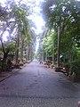 Rani Baugh Bombay (Jijamata Udyan Mumbai) - panoramio - Camaal Mustafa Sikan… (1).jpg