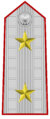 Rank insignia of tenente generale of the Italian Army (1908).png