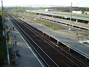 Rastorguevo (train station).jpg