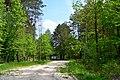 Revushky Turiiskyi Volynska-Osivskyi reserve-tract Vovchak.jpg
