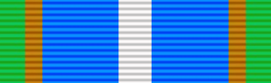 Southern Cross Medal (1975) - Distinguished Service Medal, Silver