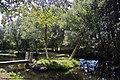 Ribeira da Anta - Moimenta - Portugal (34874804171).jpg